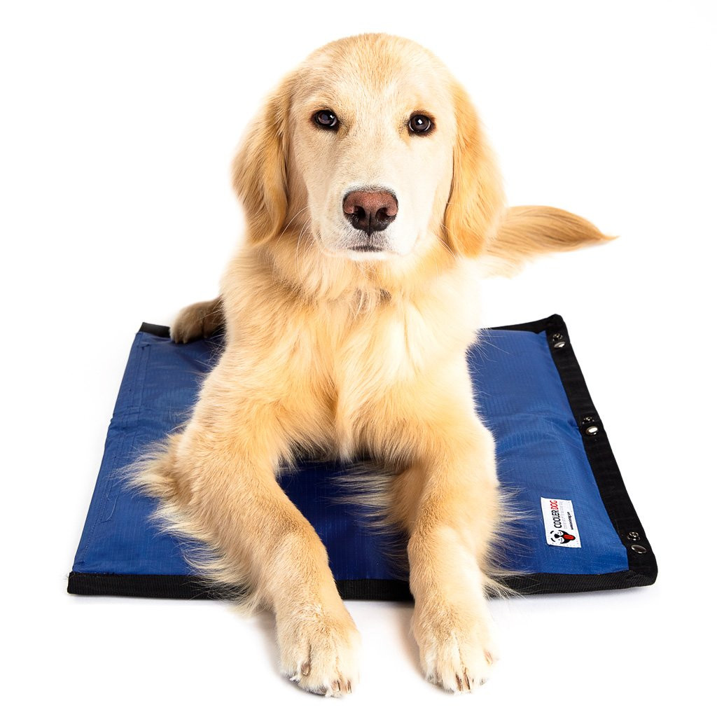 Cooler Dog Turbo Cooling Dog Mat 23inch x 18inch