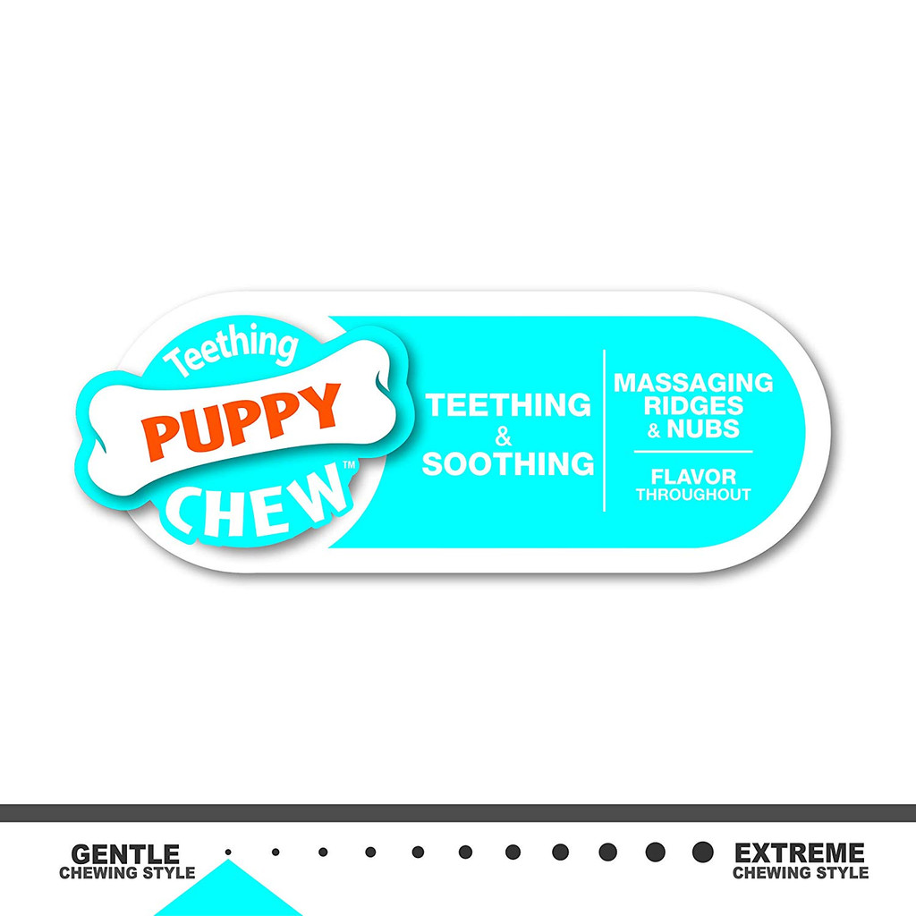 Nylabone Teething Puppy Chew Peanut Butter Chew Toy for Dogs and Puppies