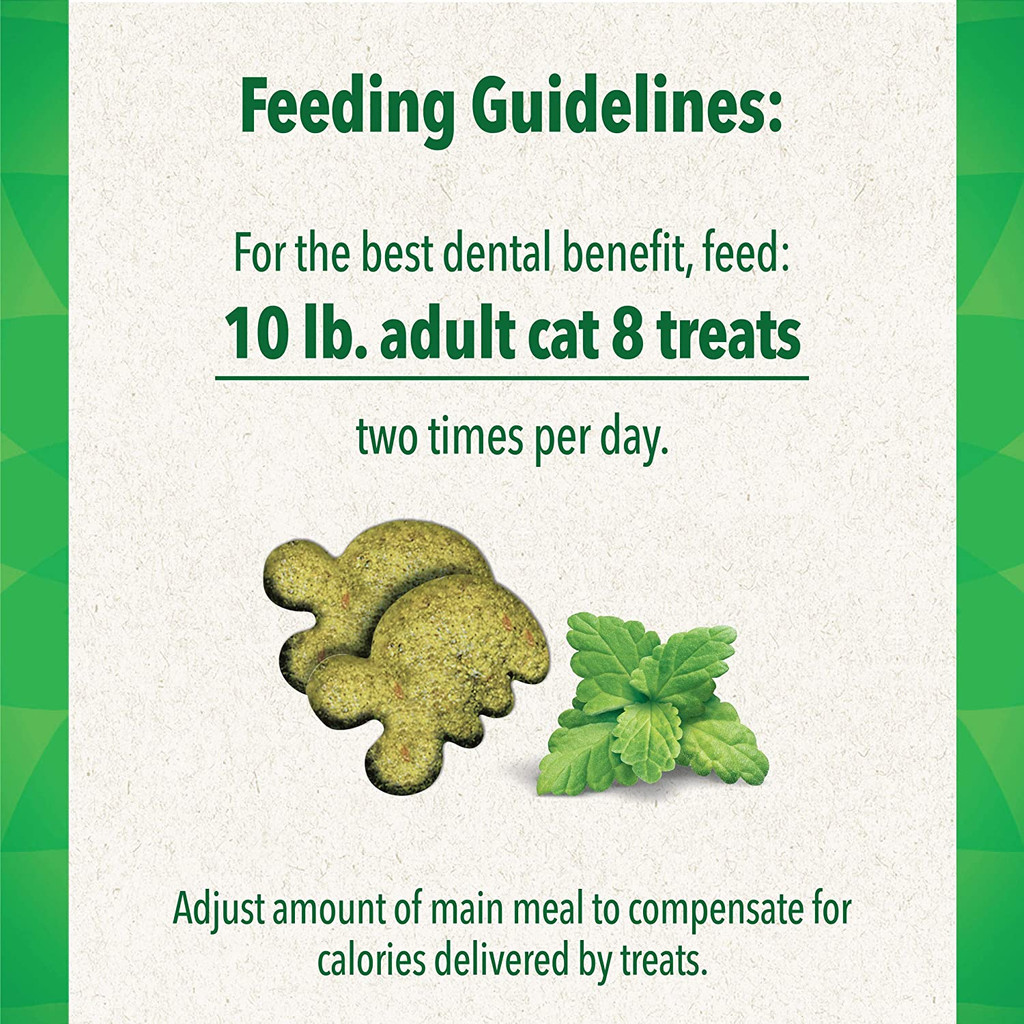 Greenies Feline Crunchy Dental Treats Catnip Flavor Mega Size 4.06 ounces
