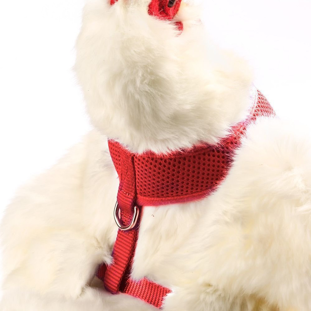 Valhoma Chicken Harness Adjustable Durable Breathable Mesh Red Small