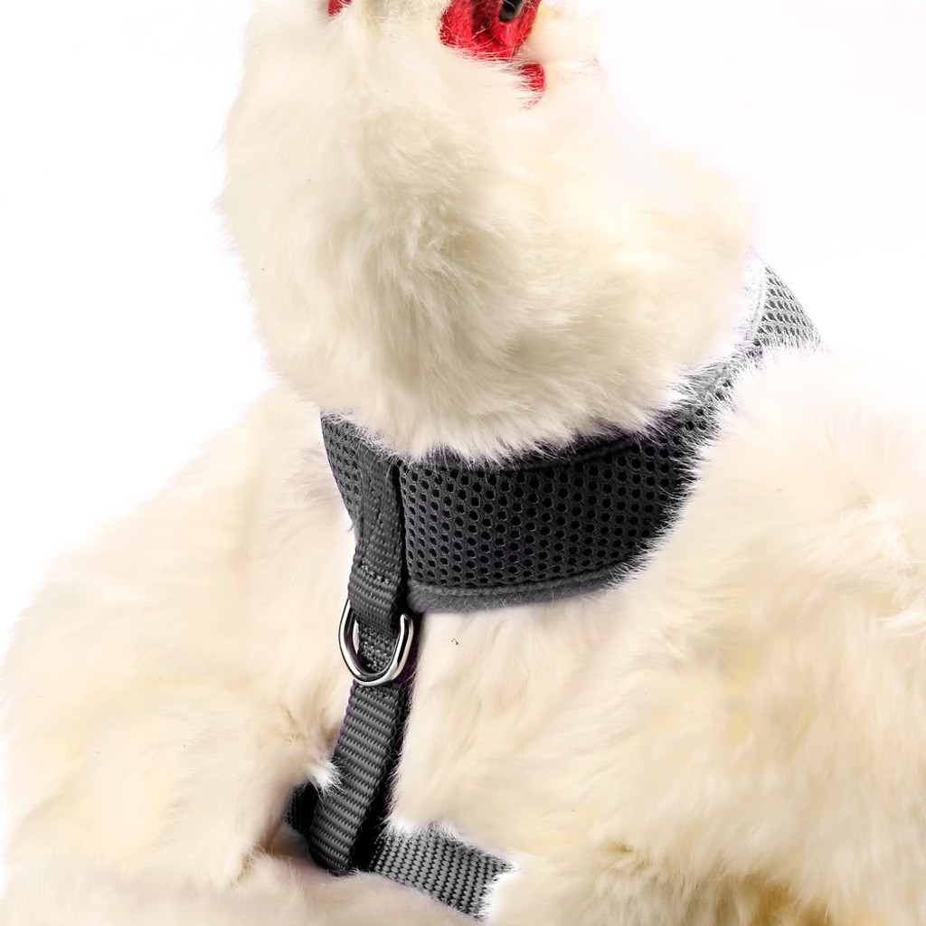 Valhoma Chicken Harness Adjustable Durable Breathable Hen Black Small