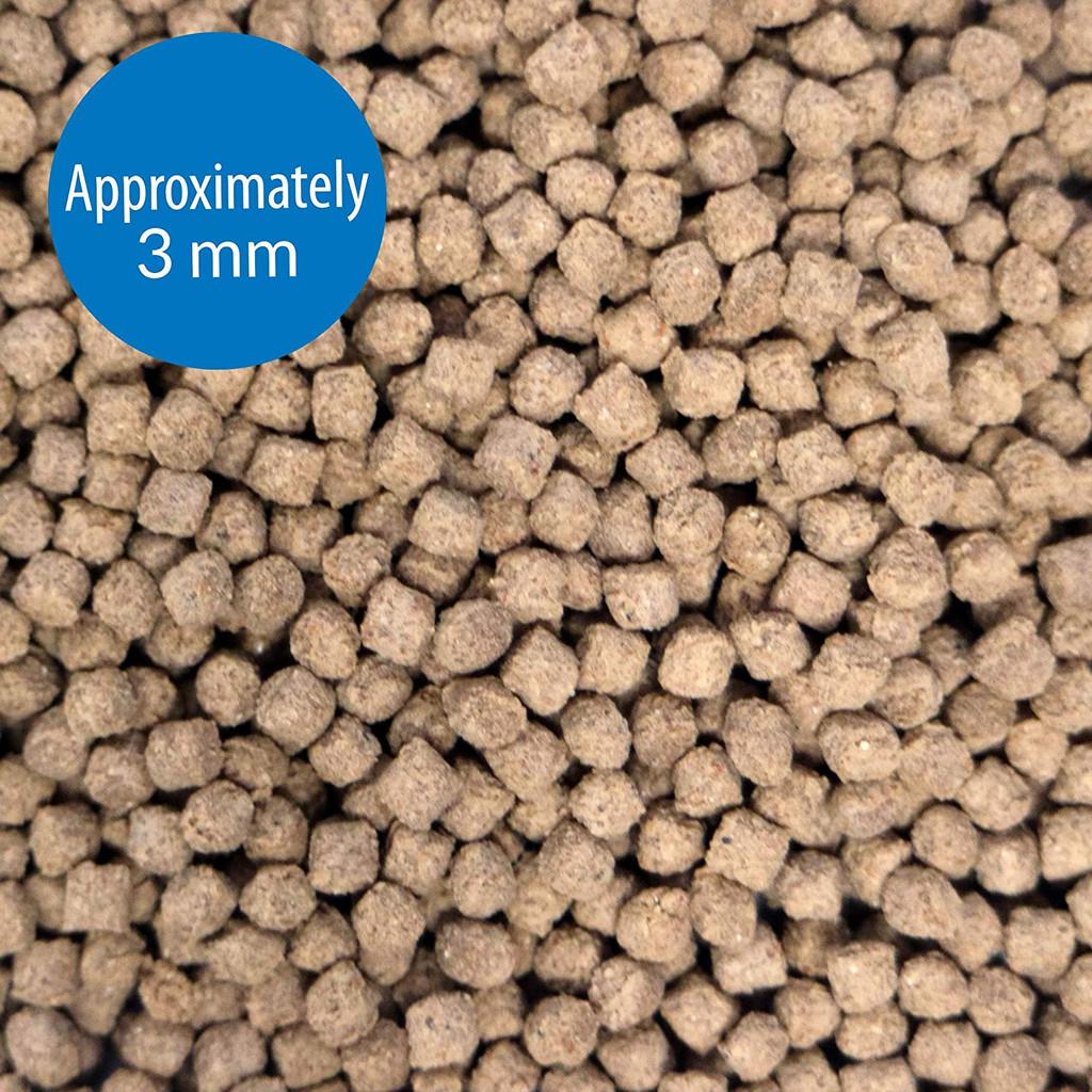 API Bottom Feeder Premium Shrimp Pellets for all Bottom Feeding Fish 4 Ounces