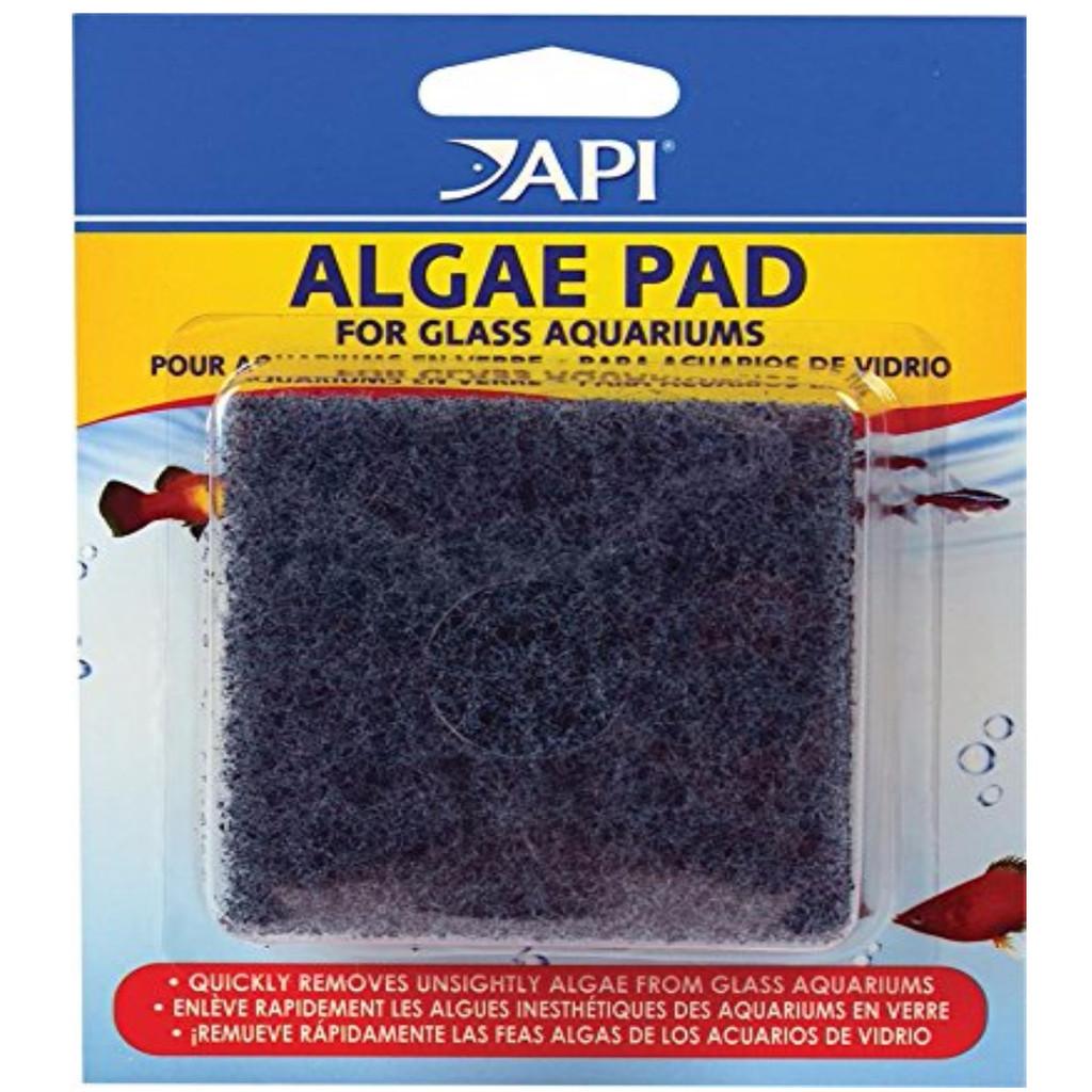API Doc Wellfish's Hand Held Algae Pad Glass Aquariums Indestructible Clean
