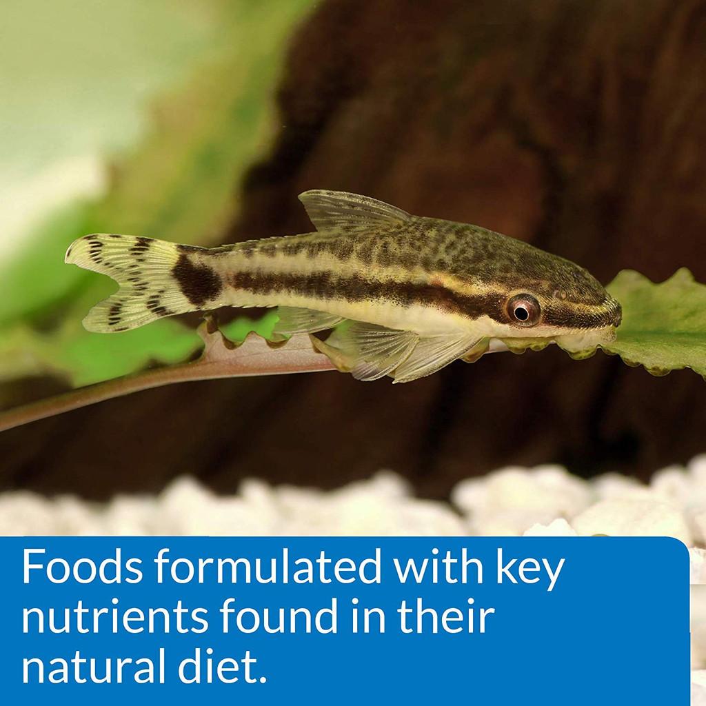 API Bottom Feeder Pellets with Shrimp Sinking Food for Bottom Feeders 1.5 Ounces