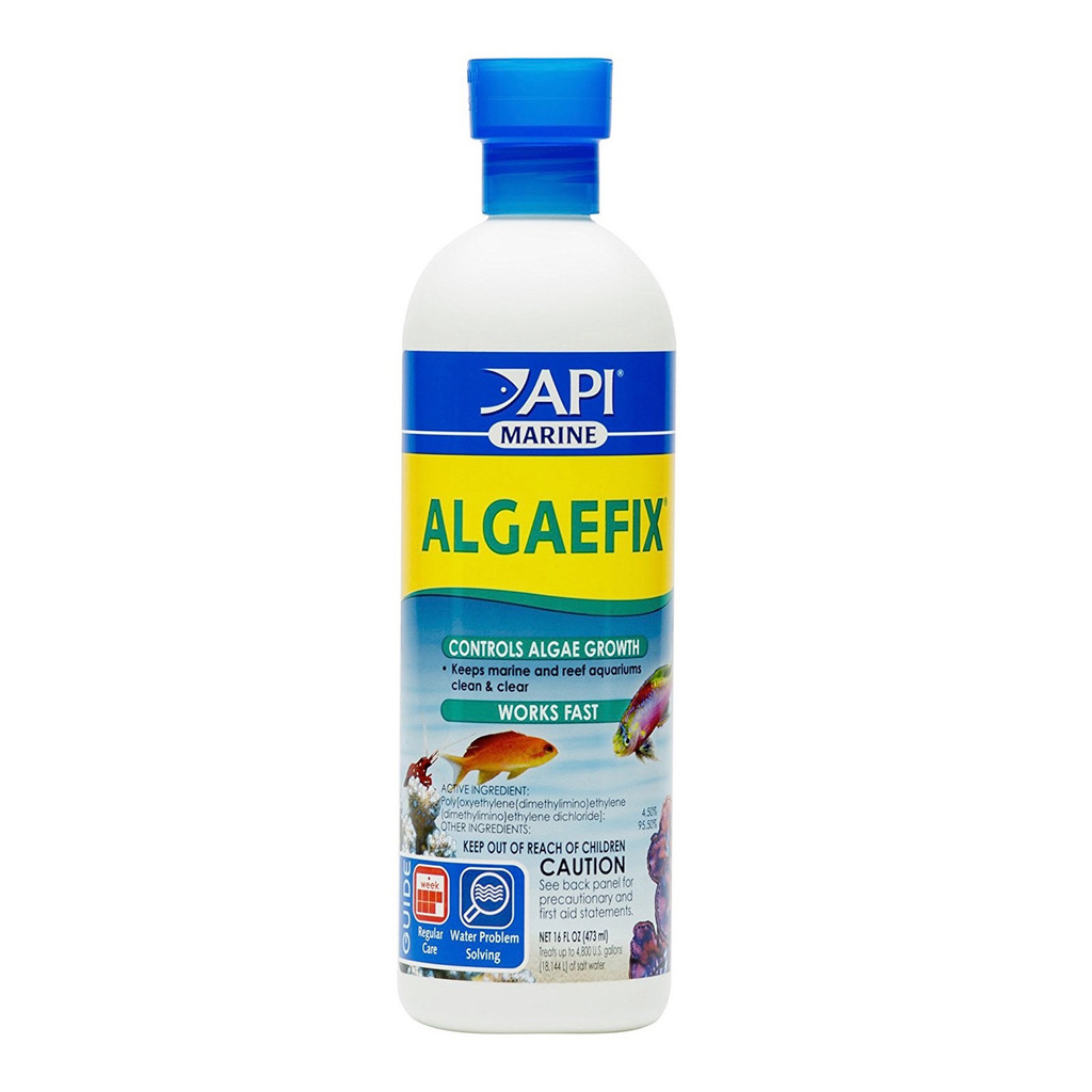 API AlgaeFix 16 oz | Keeps Marine and Reef Aquariums Clean and Clear for Fish