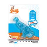 Nylabone Puppy Dental Dinosaur T-Rex   Chicken Flavor Teething Chew Toy for Dogs
