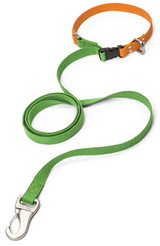 West Paw Large Greenery/Tangerine Jaunts Leash with Comfort Grip for Dogs