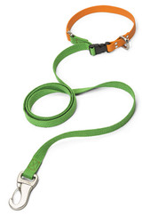 West Paw Small Greenery/Tangerine Jaunts Leash with Comfort Grip for Dogs