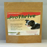 Equerry's ProThrive 12 oz | Digestive Aid for Dogs
