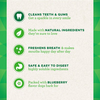 Greenies Bursting BlueBerry Large Size 8 count 12 oz | Dental Treats for Dogs