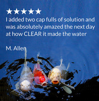 API Pond Simply Clear Pond Clarifier 16 Ounces