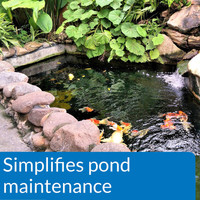 API Pond EcoFix Sludge Destroyer 16 Ounces