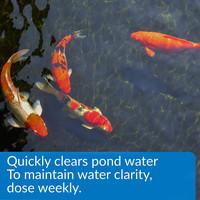 API Pond Accu-Clear Pond Water Clarifier 16 Ounces