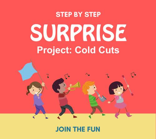 Step by Step Surprise Project 8: Cold Cuts- QT LIVE