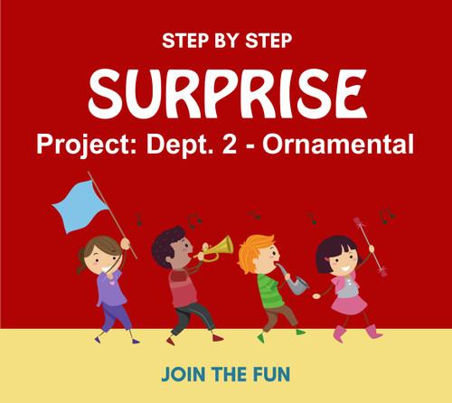 Step by Step Surprise Project 10: Dept. 2, Ornamental- QT LIVE