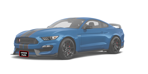 2015-2019 Ford Mustang Shelby GT350/GT350R