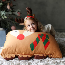 **Limited Edition** Animal 3D Pillowcase - HOLLY