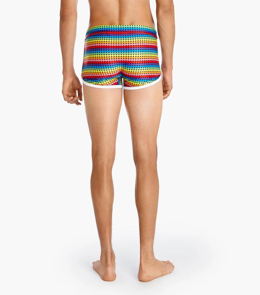 2(x)ist Cabo Retro Pride Swim Trunks