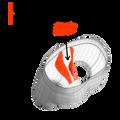 SAXX Daytripper Boxer Brief - Predator Camo