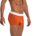 Wood Hermosa Beach - Boxer Brief  w/Fly