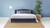 Everly Wingback Platform Bed, King, Midnight Blue