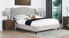 Coverley Tufted Wingback Platform Bed