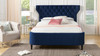 Robyn Tufted Curved Back Headboard Panel Bed, Queen, Navy Blue