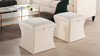 Holly Storage Ottoman, Sky Neutral