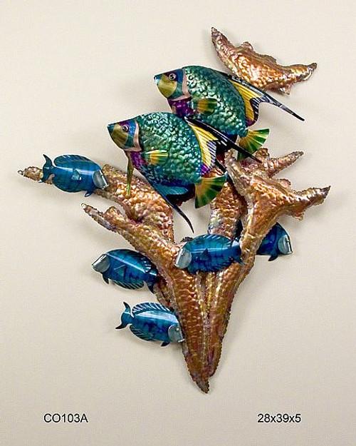 Angelfish Copper Reef