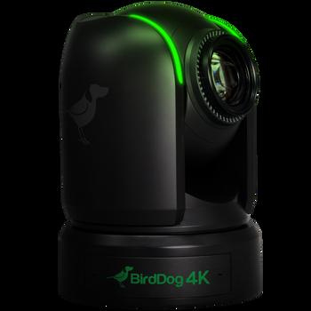 "P4K. 4K 10-Bit Full NDI PTZ with 1"" Sony Sensor."