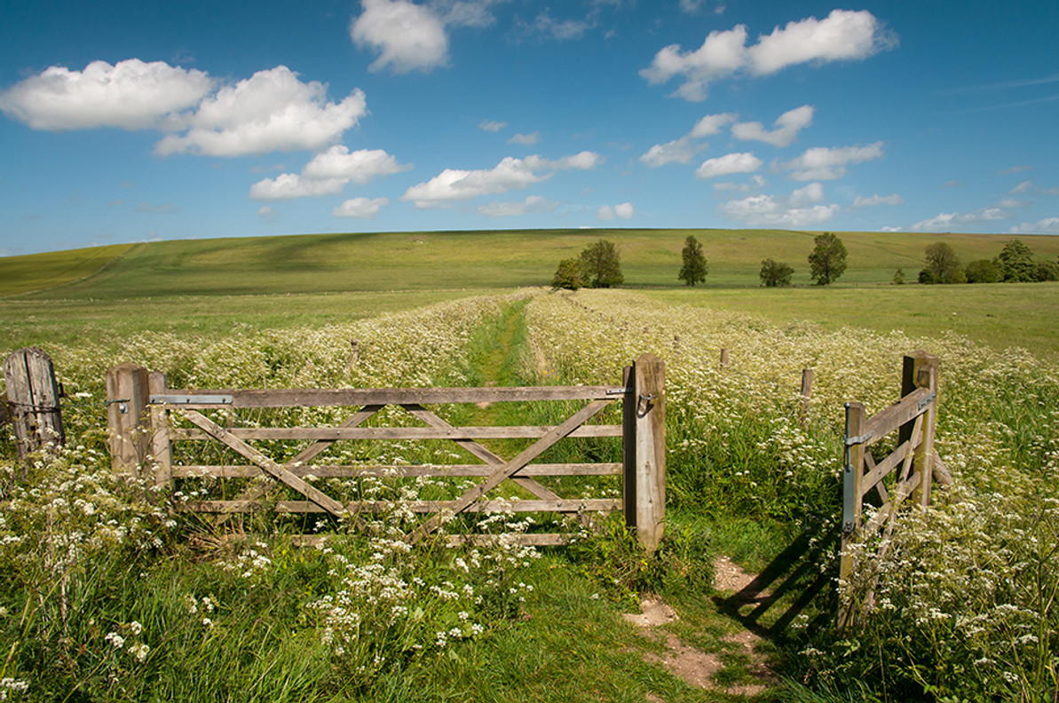 Installation Tips For Timber Field Gates