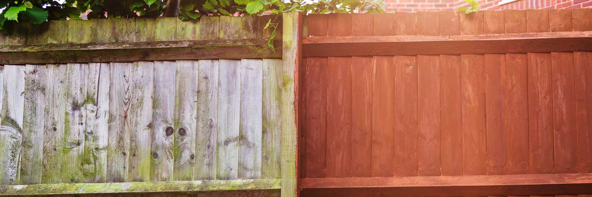 What Colour Should I Paint my Fence or Shed?