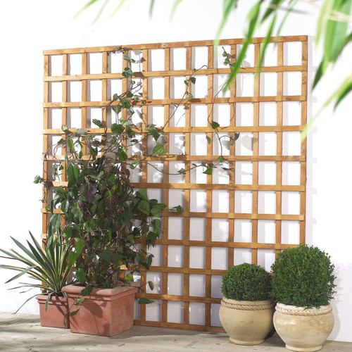 Traditional Square Trellis 1.83m(W) x 1.83m(H) Pressure Treated (Natural)