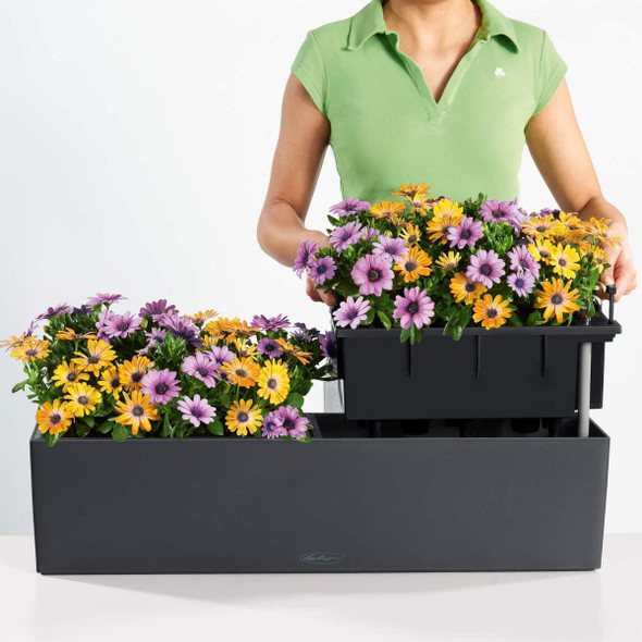 Window Box Self-watering Planter with Substrate
