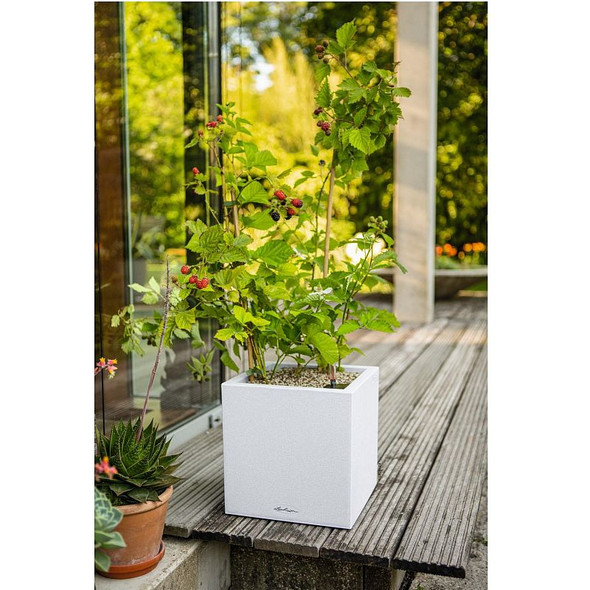 Self-Watering Stone Effect Polyresin Cube Planter with Substrate