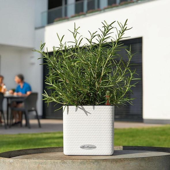 Self-Watering Basket Weave Polyresin Table Cube Planter