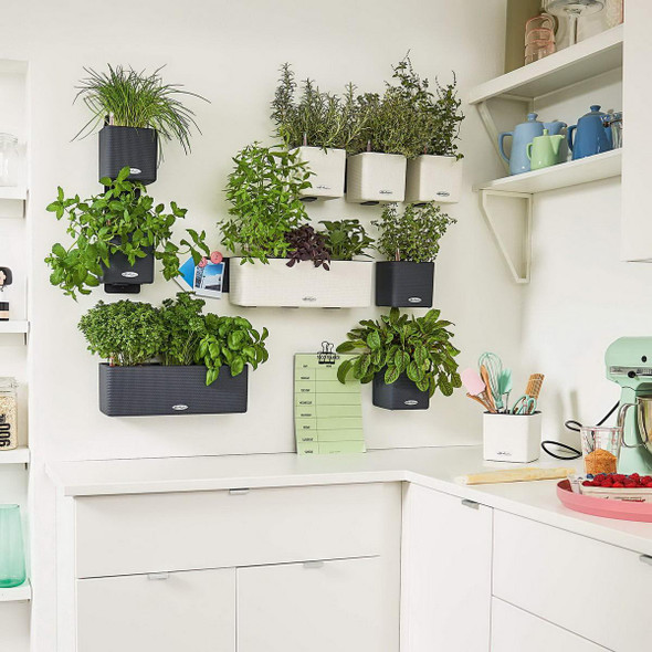 Self-Watering Textured Polyresin Wall Kit Planters