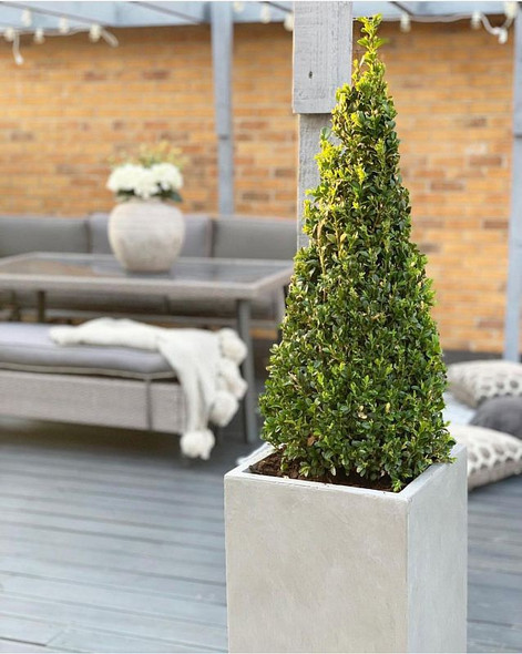 Smooth Fibrestone Tall Square Planter