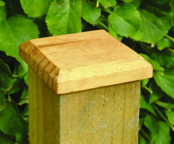 Fence Post Cap (100 x 100mm) - Pressure Treated Green Timber