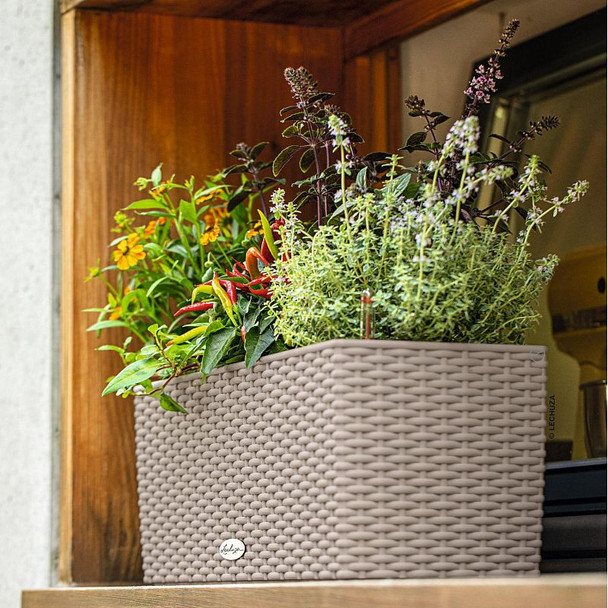 Cottage Polyresin Window Box Self-watering Planter with Substrate