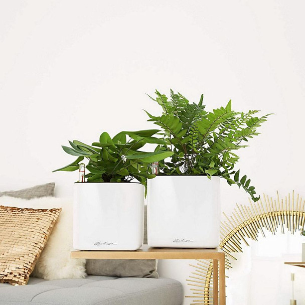 Self-Watering Glossy Polyresin Table Cube Planter