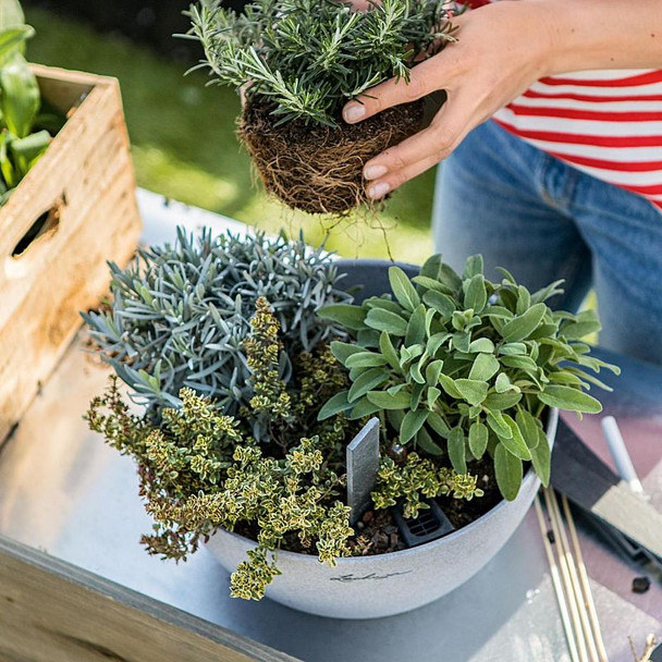 CUBETO Stone Poly Resin Table Self-watering Planter with Substrate
