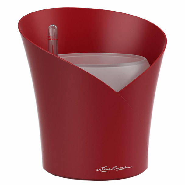 Self-Watering Matte Polyresin Orchid Planter with Substrate