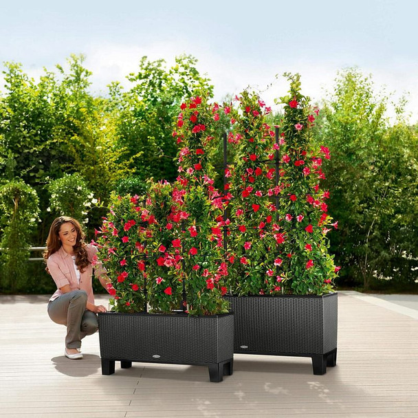 Three Section Self-Watering Basket Weave Polyresin Planter with Substrate