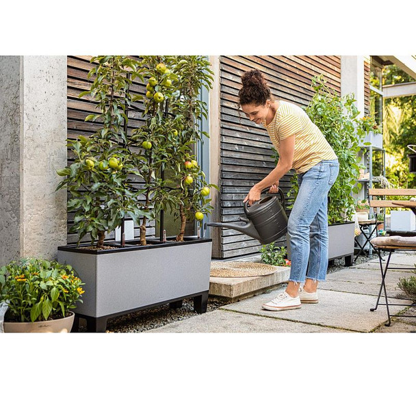 Three Section Self-Watering Stone Effect Polyresin Planter with Substrate