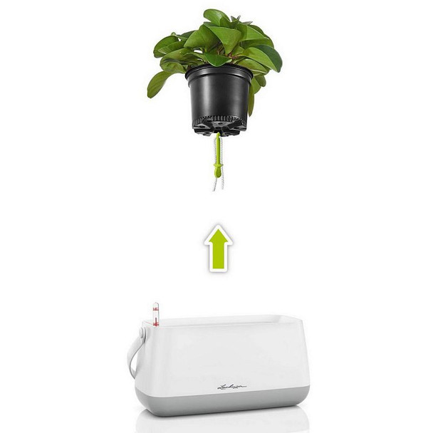 Self-Watering Semi Gloss Polyresin Bag Planter