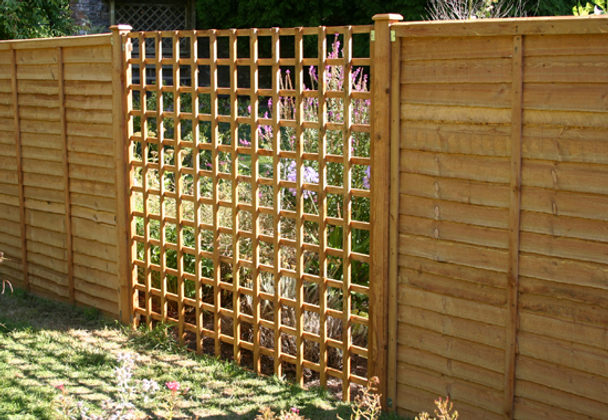 Traditional Square Trellis (1830 x 1830mm) - Pressure Treated Green Timber