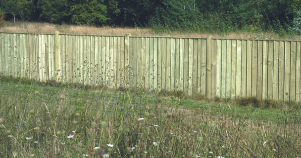 6ft Closeboard Fence Panel (1830 x 1200mm) - Pressure Treated Green Timber