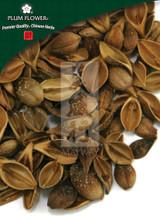 Forsythia Fruit (Lian Qiao) - Whole / Cut Form 1 lb - Plum Flower Brand