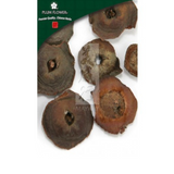 Persimmon Calyx (Shi Di) - Cut Form 1 lb - Plum Flower